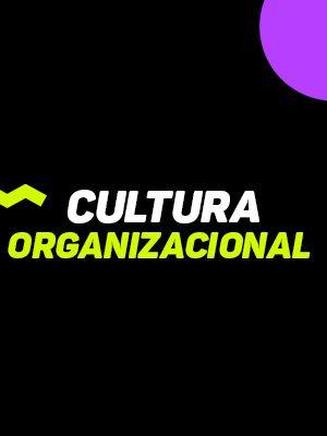 Cultura Organizacional_